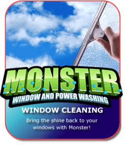Window Cleaning in The Bronx, New York by Monster Wash